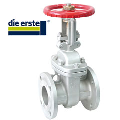 Stainless Steel Flanged Gate Valves