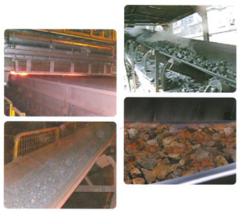 Specialty Conveyor Belts