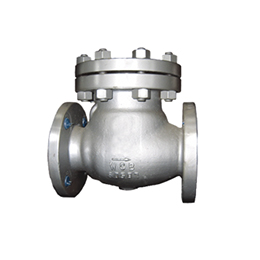 Energy Division Seal Check Valves