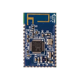 Bluetooth Low Energy Module with RTL8762AG and PCB Antenna AXB021