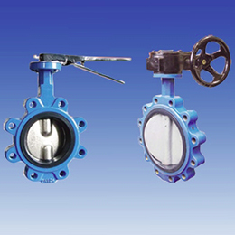 Centerline Lug Type Butterfly Valve