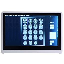 Medical Panel PC MPC153-834