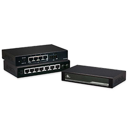 Managed & Unmanaged Ethernet Switch EX16900 Series