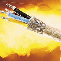 Wires-Cables for Extreme Temperatures