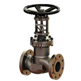 stainless steel globe stop and check valves