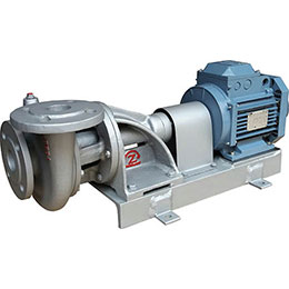 End Suction Pumps-FT Serie