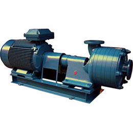 Multistage Pumps-ZJ Serie