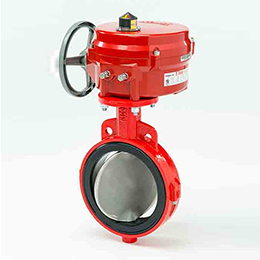 Soft-Sealing Butterfly Valve-20-21
