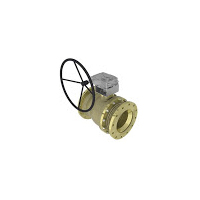 Seawater Systems Ball Valves - Trunnion