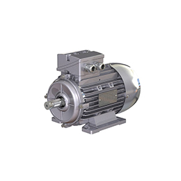 General performance motor  Low voltage