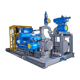 Multiphase Pump System