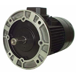 Induction motors of series 4TM-5TM
