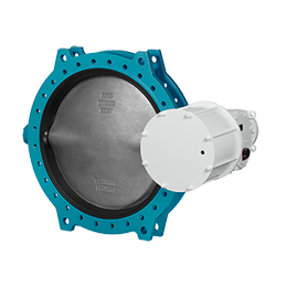 Pneumatically operated butterfly valve C481