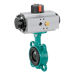 Pneumatically operated butterfly valve D481