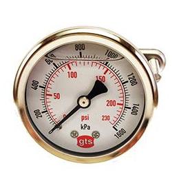 Pressure Gauges Rear Conn GTS 50 mm