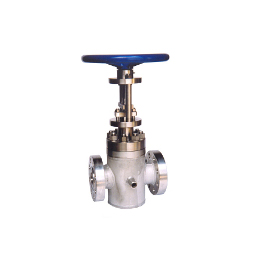 Polymer gate valve