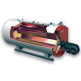 thsd-i 25-20-220-200 e steam boiler