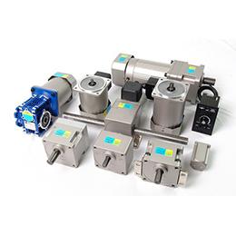 Ac-dc gear motor