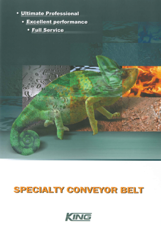 Specialty Conveyor Belt