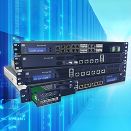 Network Appliance Processor -  High Flexible and Agile Network Appliance