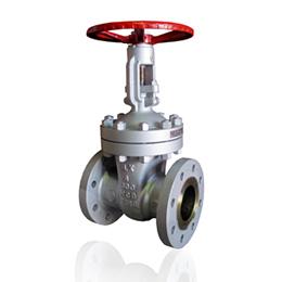 api (gate valve)