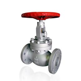 api (globe valve)