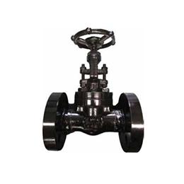 High Pressure Globe Valves T245