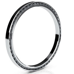 Reali-Slim stainless steel bearings