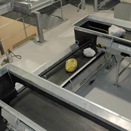 Process conveyors