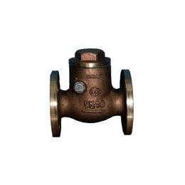 Swing check valves