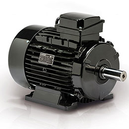 HIGH EFFICIENCY MOTORS-IE2-CURUS