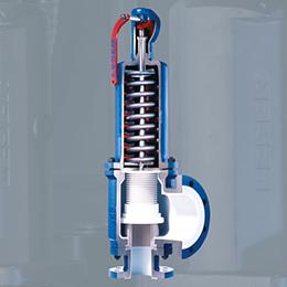 Critical Service Safety valves
