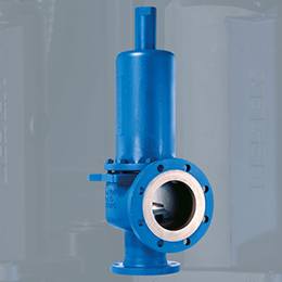High Performance Safety valves