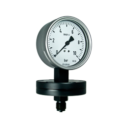 Diaphragm pressure gauges P10