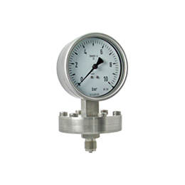 Diaphragm pressure gauges P20