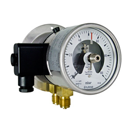 Differential pressure gauges with diaphragm element DM10