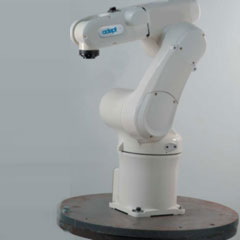 Robot and Motion Controls