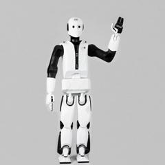 Humanoid robotics research - REEM-C 04
