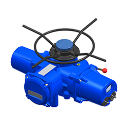multi-turn actuator
