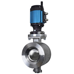 ramen ball sector basis weight control valve
