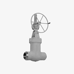globe valves - cast pressure seal t - y pattern