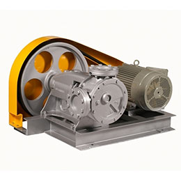 IG Internal Gear Pump