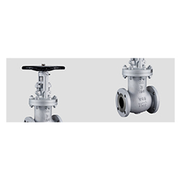 bellows sealed valves