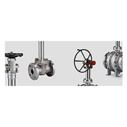 cryogenic service valves