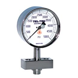 homogenizer line sanitary pressure gauges