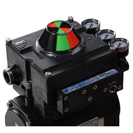 ve model pneumatic valve positioner