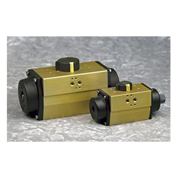 AP-rotary pneumatic actuators
