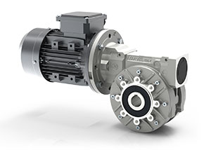 RS Series-Worm gearboxes