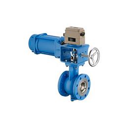 Type 82-7-MAXIFLUSS rotary valve